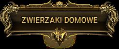 belka_zwierzaki_domowe.png